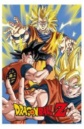 Dragonball Z Goku Forms Poster